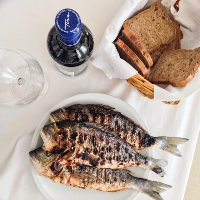 go dubrovnik wine dine fish