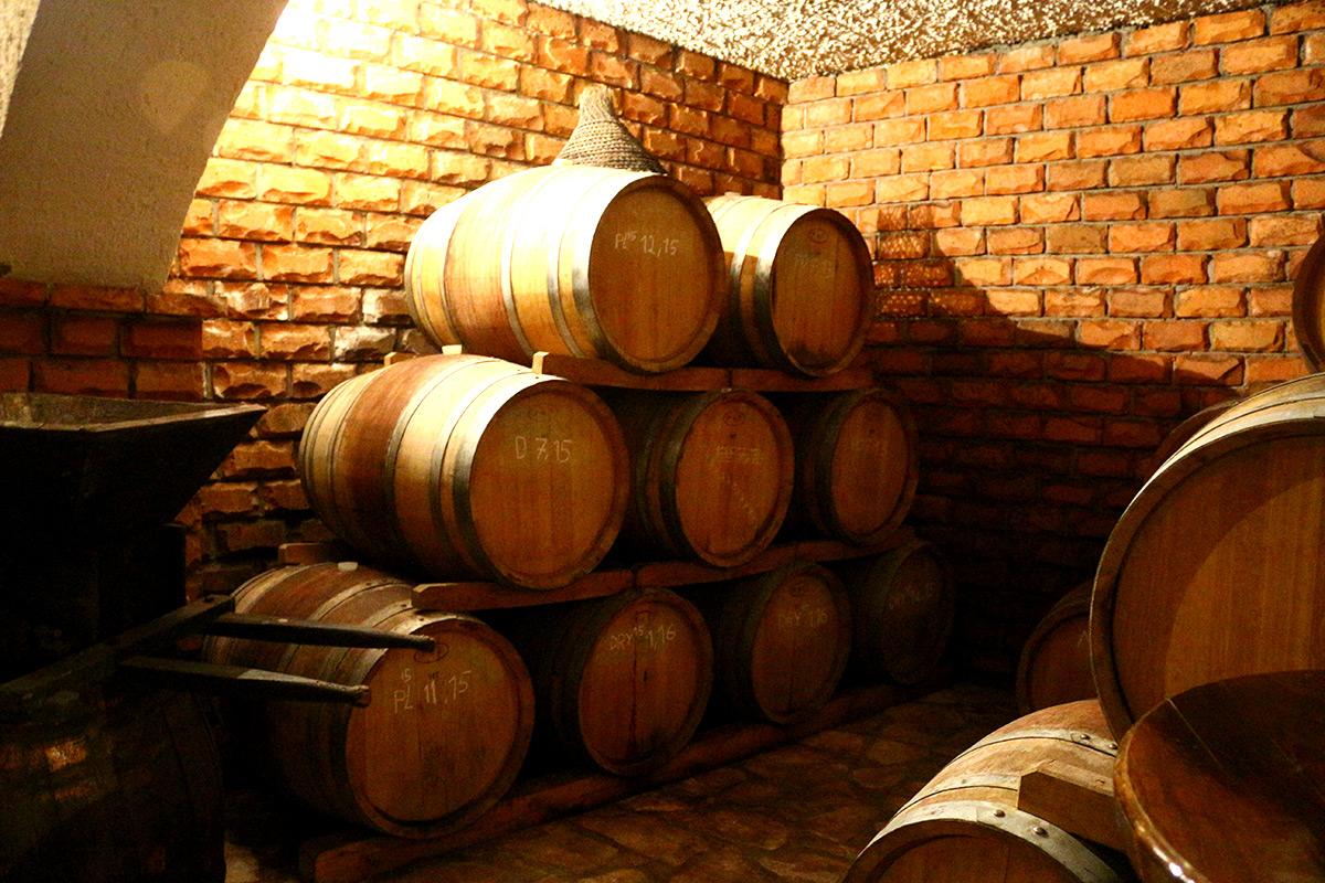 winery tour go dubrovnik dubrovnik croatia