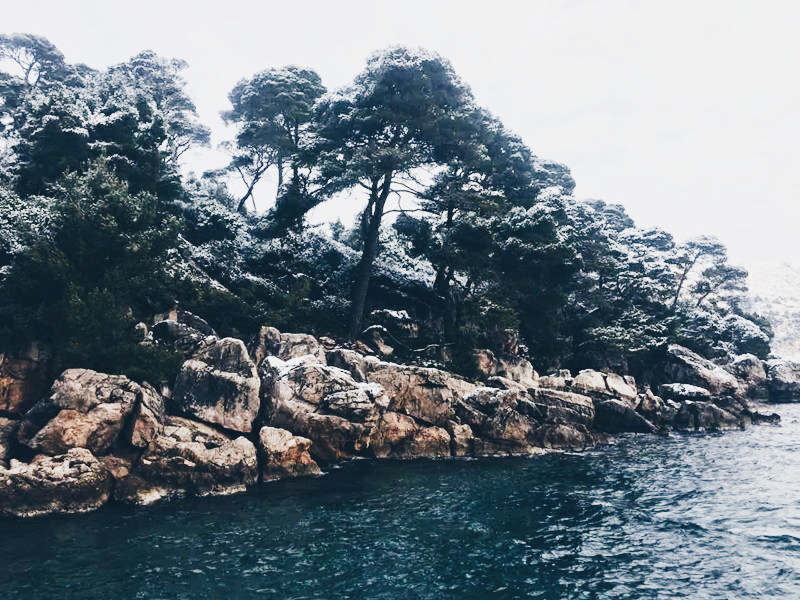 Lokrum Island Croatia Dubrovnik