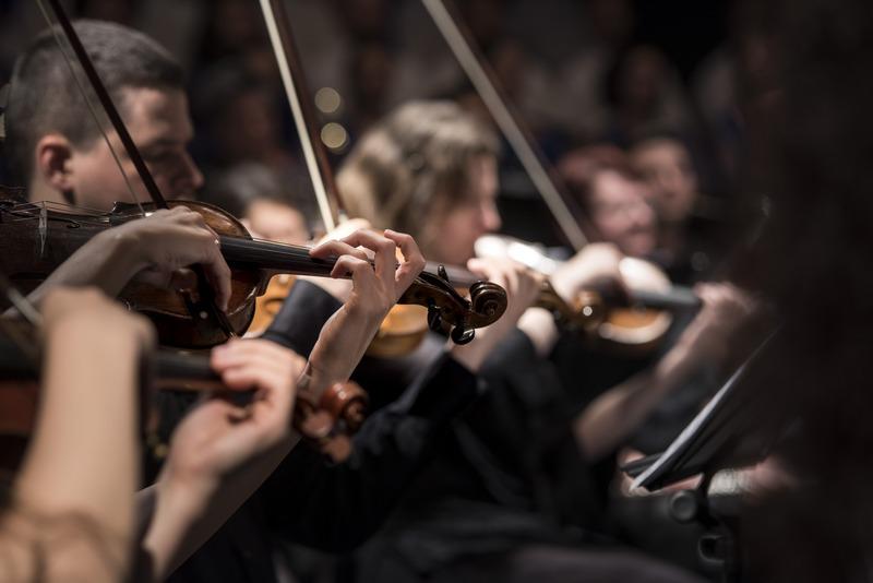 violin International Late Summer Music Festival GoDubrovnik