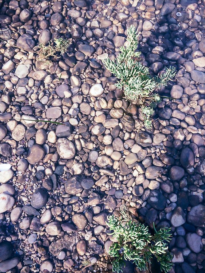dubrovnik mainland bistrina