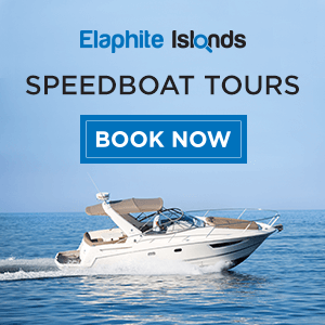 Elaphite islands private boat tours Dubrovnik