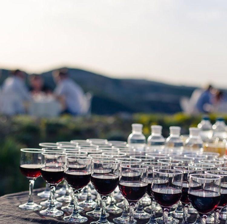 wine go dubrovnik