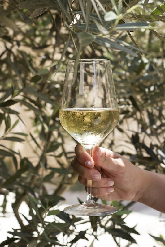 wine dubrovnik