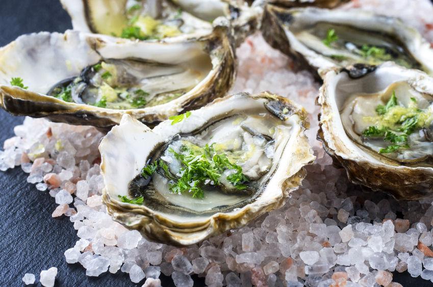 fresh oysters Dubrovnik