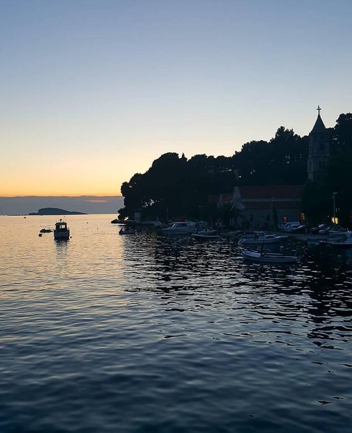 U2 band celebration Dubrovnik Cavtat