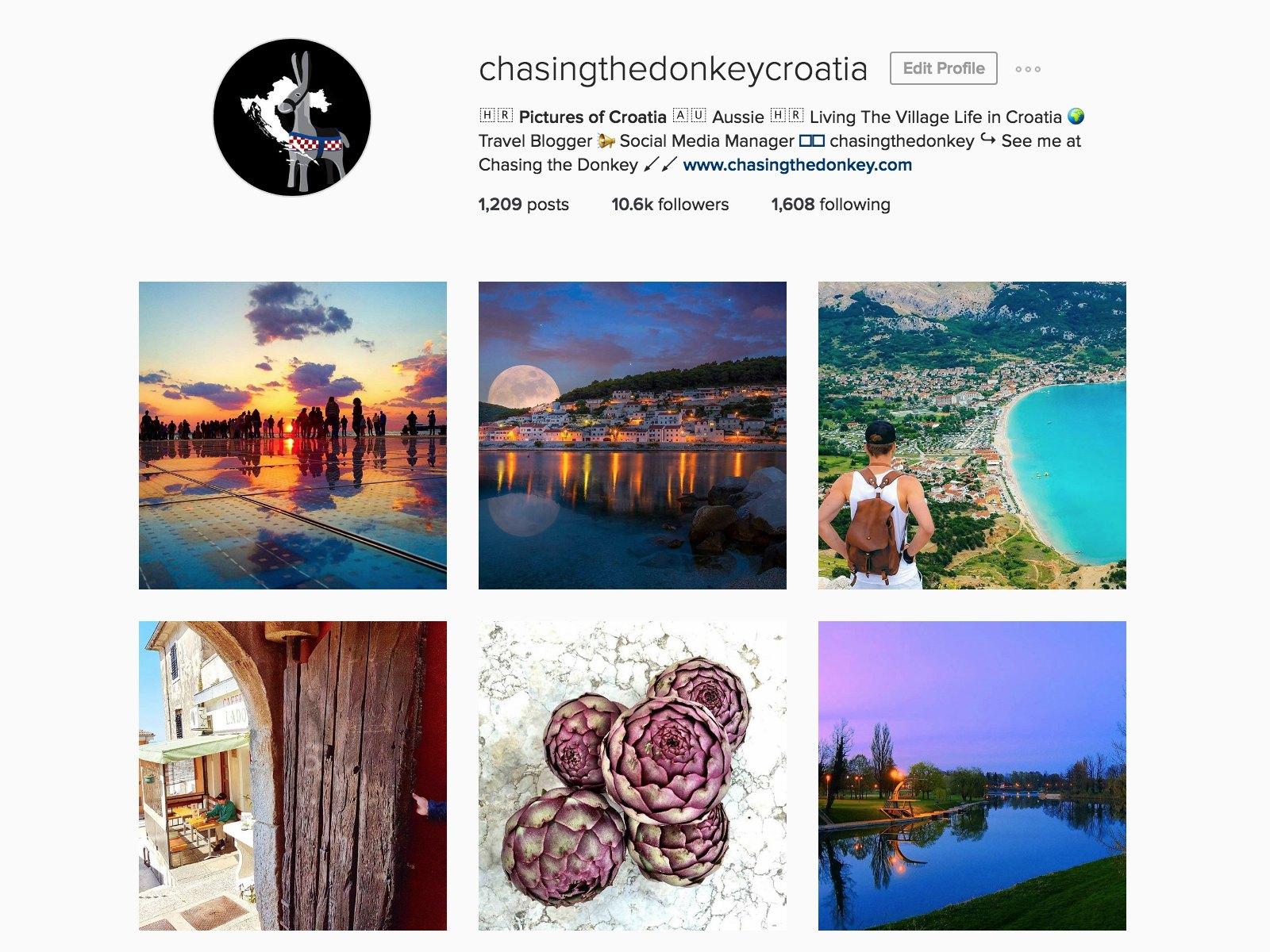 chasing the donkey instagram