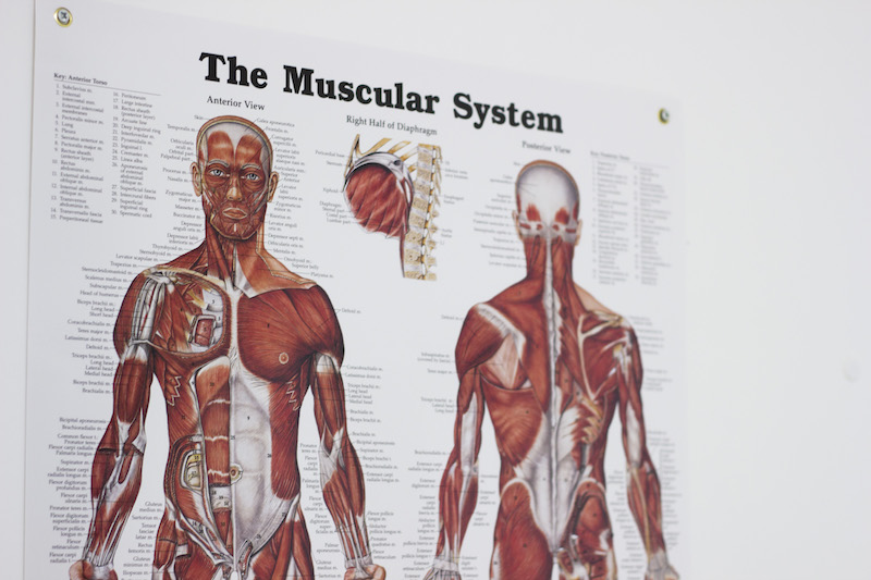 fizikalna terapija deni begovic