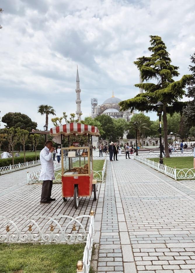 istanbulska dzamija