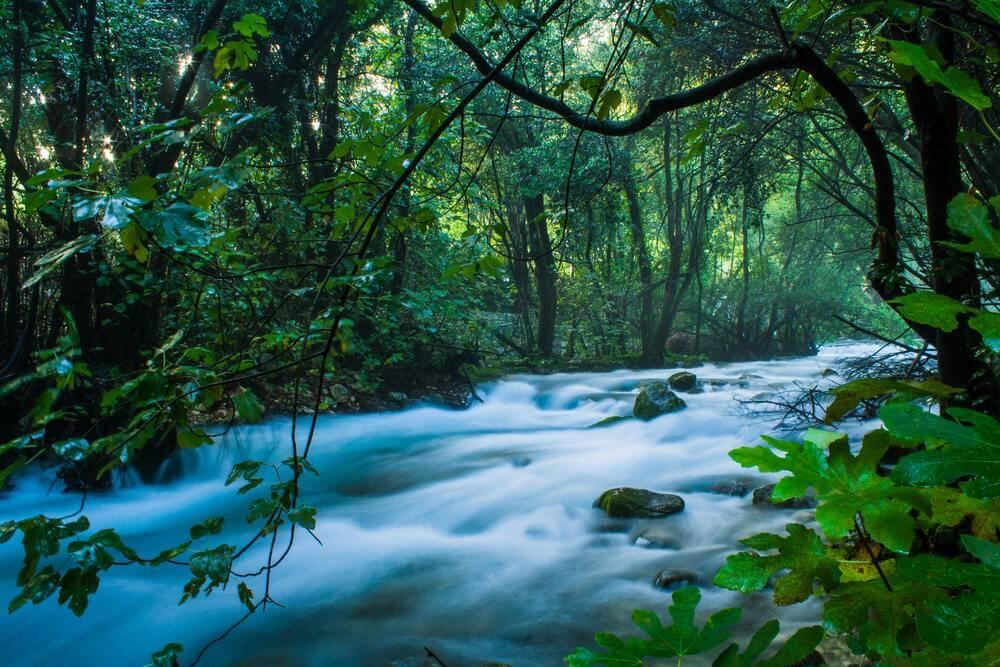 konavle ljuta river