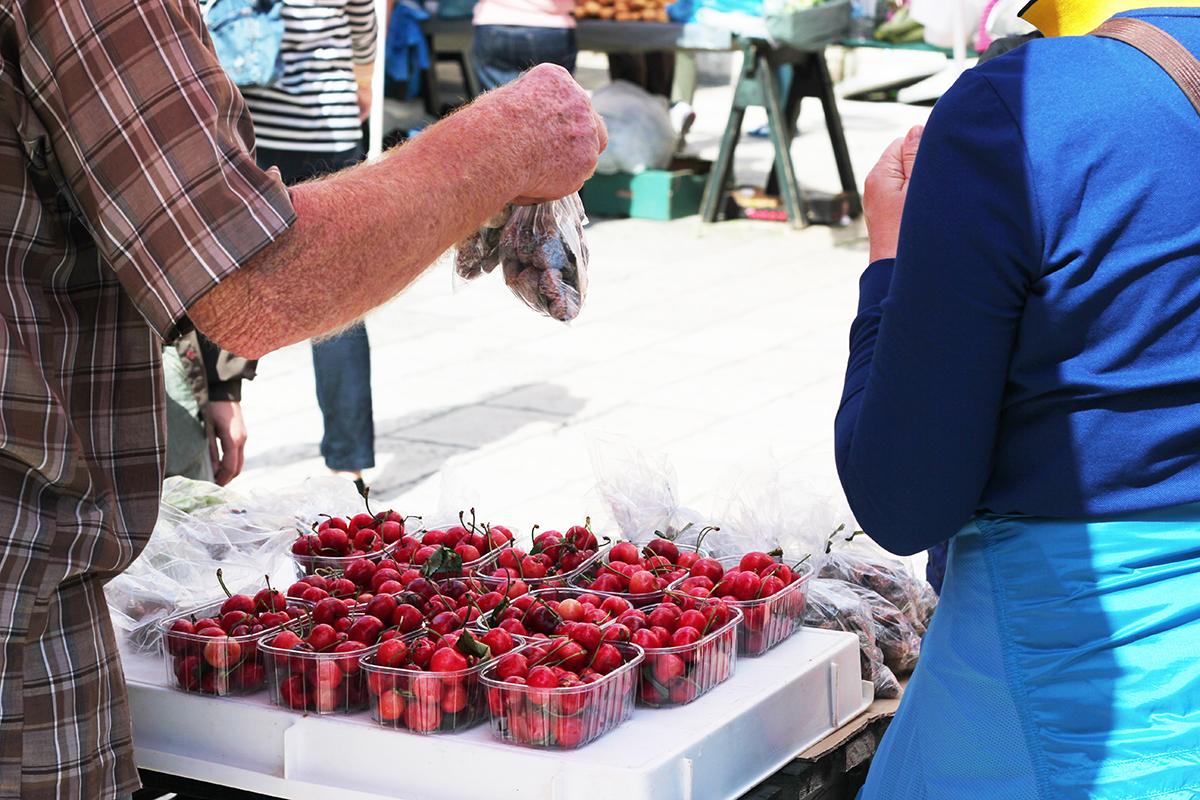 green market organic food go dubrovnik
