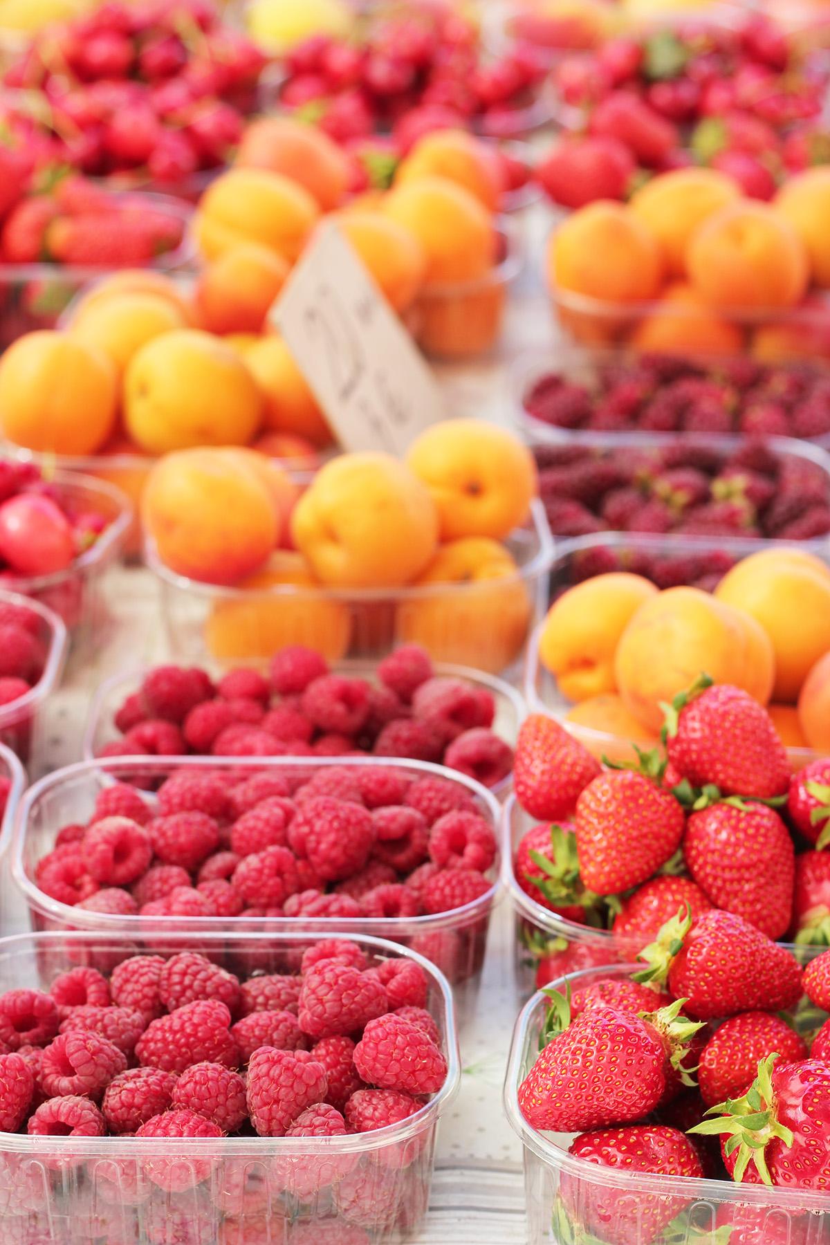 pjaca dubrovnik green market organic food go dubrovnik (1)