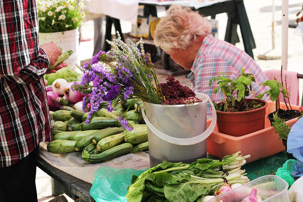 dubrovnik green market organic food go dubrovnik