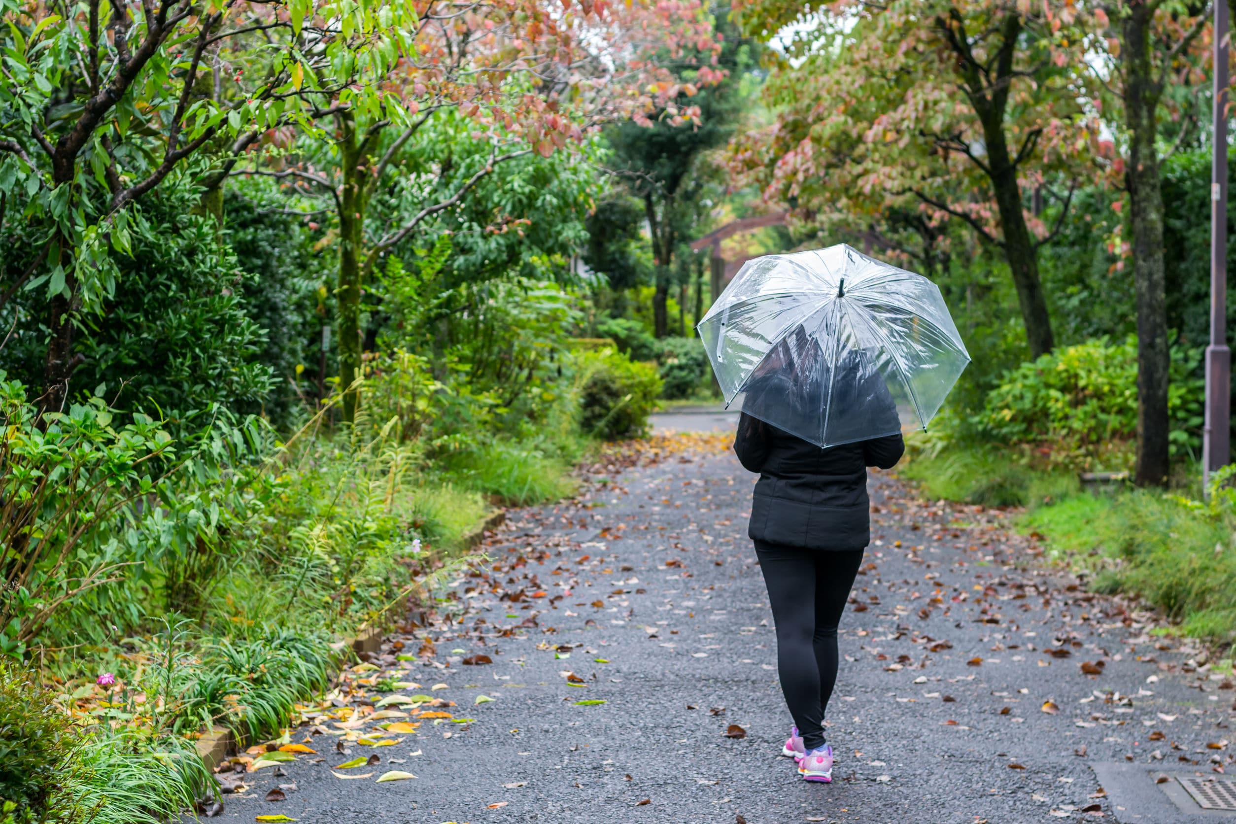 walking on a rainy day