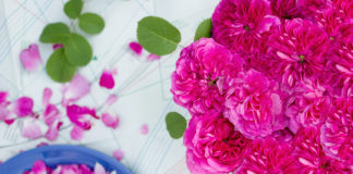 rozulin rose liquor