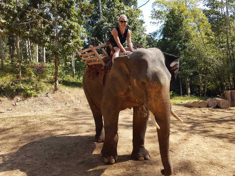 slon Ivan Vuković Burma Putopis