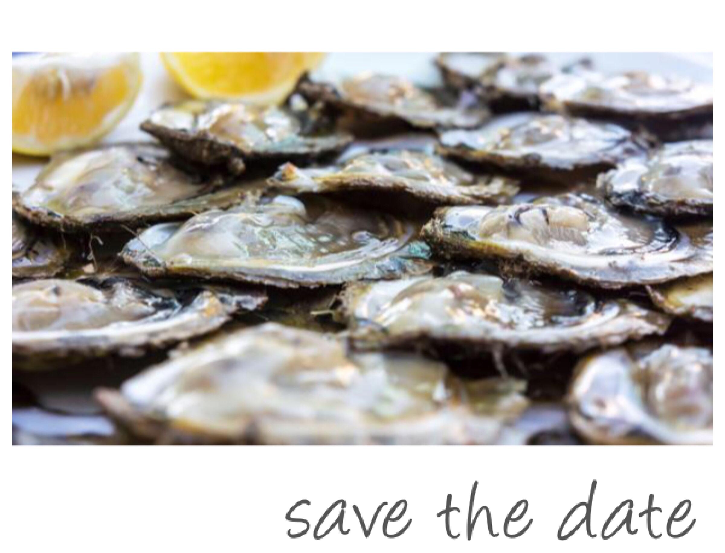 ston oysters shefs corner go dubrovnik