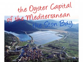 go dubrovnik chefs corner. Ston bay oyster capital of of the Mediterranean