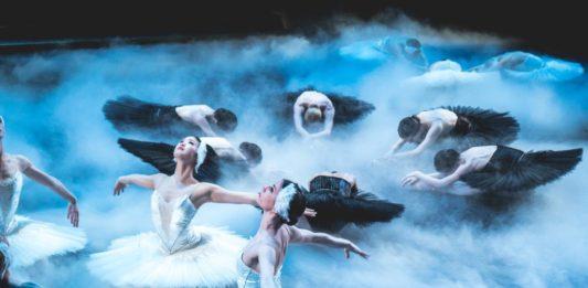 swan lake dubrovnik